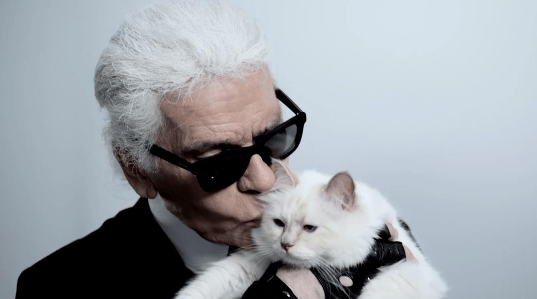 Choupette, la gatita millonaria de Karl Lagerfeld