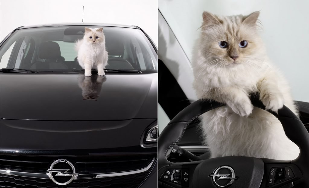 opel corsa choupette The Luxury Trends
