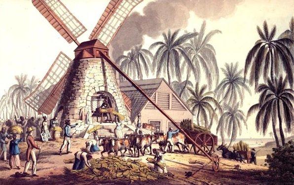 The-Luxury-Trends-Ron-industria-azúcar