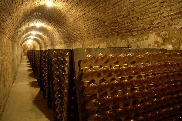 The-Luxury-Trends-Roeder-bodega