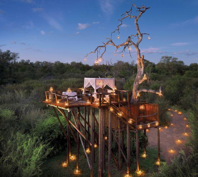 Treehouse en Sudáfrica, la mejor aventura bajo las estrellas